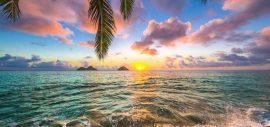 Hawaii เกาะสวรรค์ในความฝันของหลายคน
